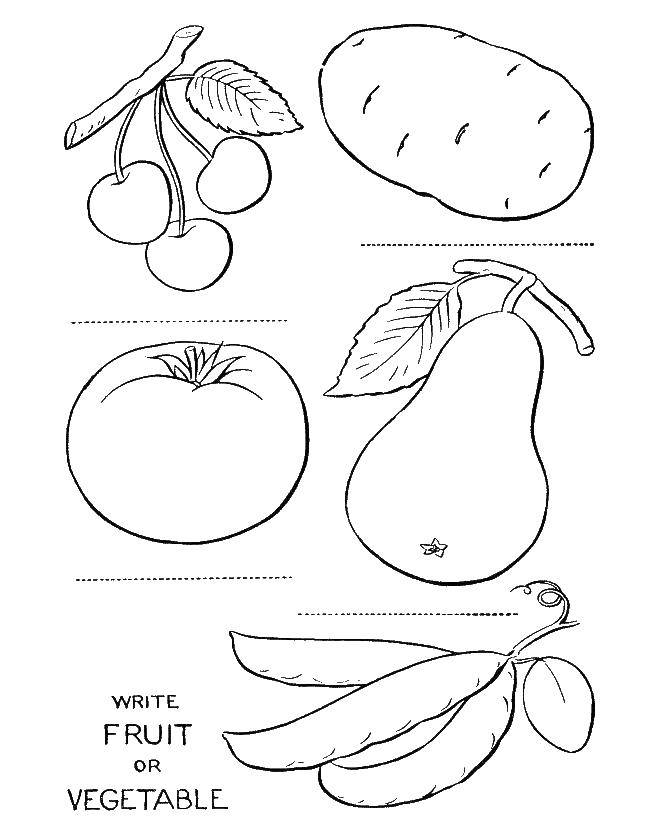 Раскраска овощи Скачать .  Распечатать