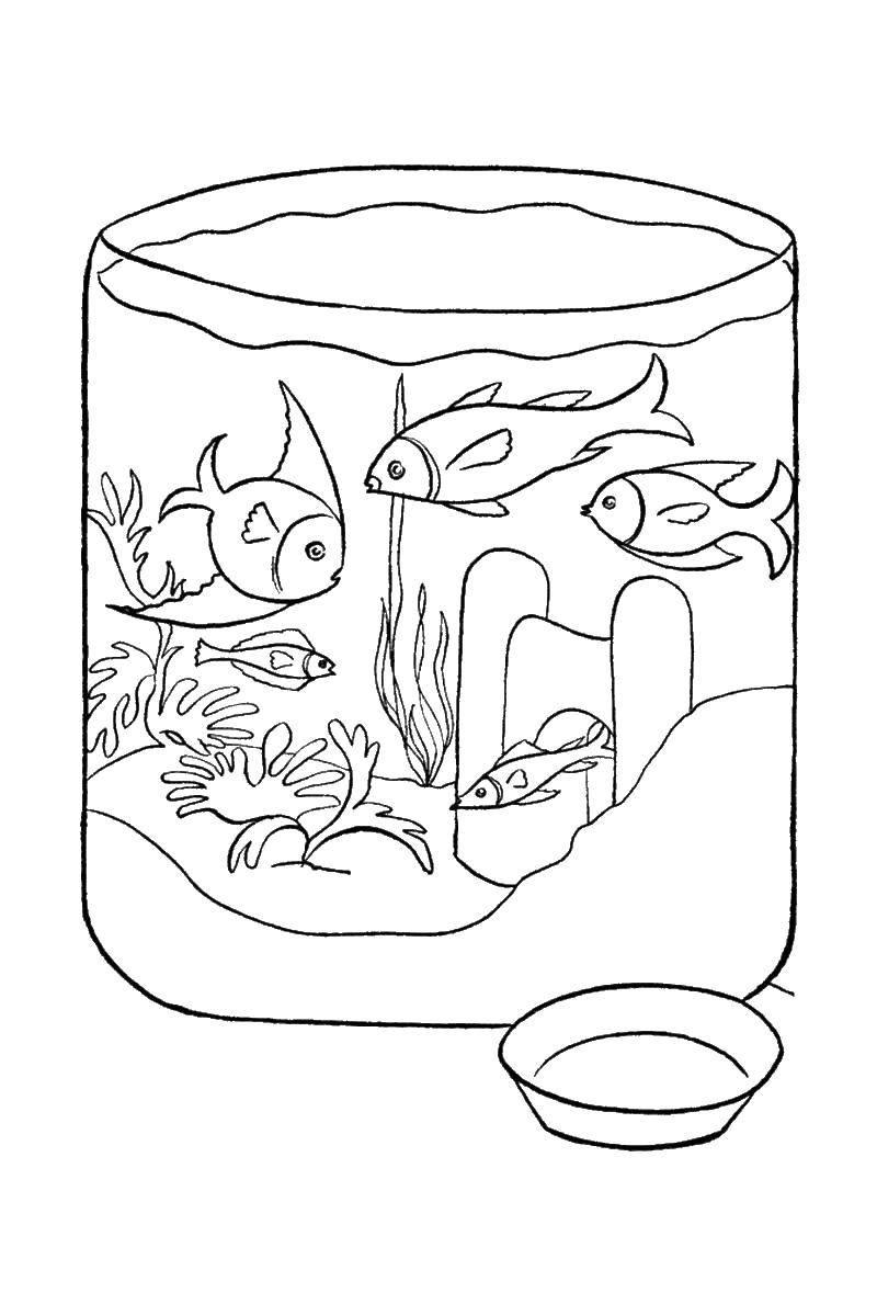 Раскраска рыбы Скачать животные, собачка, Рождество.  Распечатать ,животные,