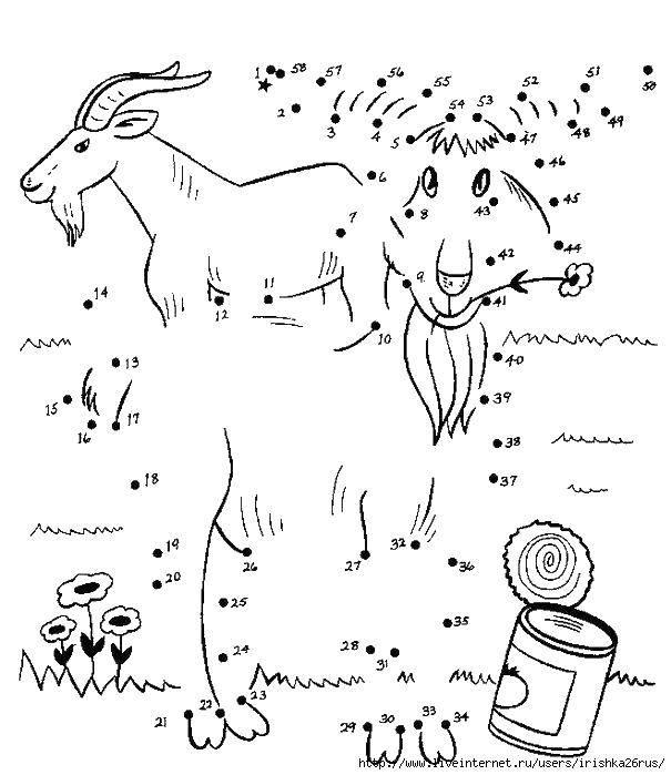Раскраска Козел и цветок Скачать ,козел, цветок, цифры, банка,.  Распечатать