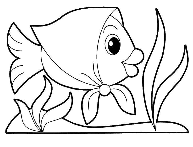 Раскраска рыбы Скачать Хэллоу Китти, клубника, белочка.  Распечатать ,Хэллоу Китти,