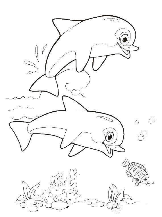 Раскраска морское Скачать Персонаж из мультфильма, Время Приключений .  Распечатать ,Персонаж из мультфильма,