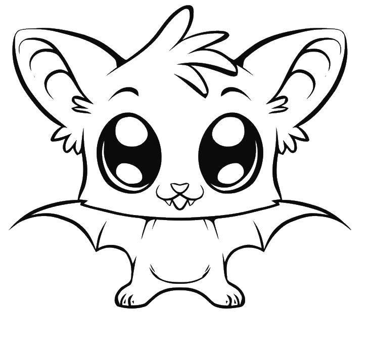 Раскраска Летучая мышка с большими глазками Скачать животные, летучие мыши.  Распечатать ,животные,