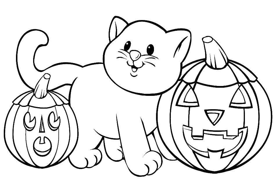 Раскраска Кошечки среди двух тыкв Скачать Хэллоуин, тыквы, кошечка.  Распечатать ,Хэллоуин,