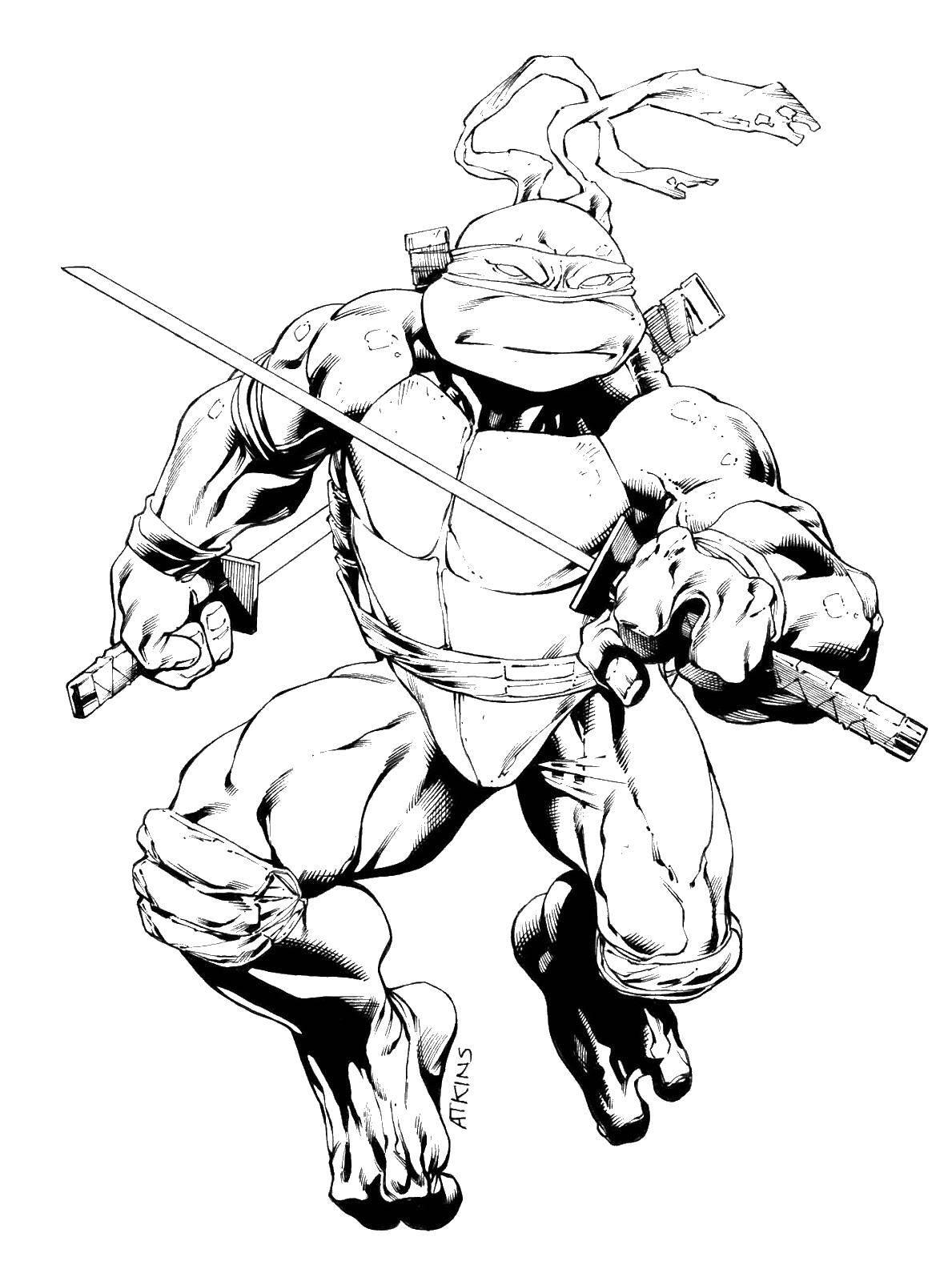 Раскраска Леонардо с мечом Скачать черепаха, Леонардо, меч.  Распечатать ,черепашки ниндзя,