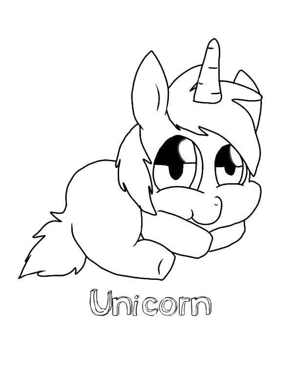 Раскраска Малыш единорог Скачать пони, единороги, малыш.  Распечатать ,детеныши животных,