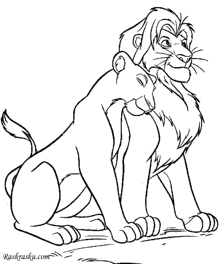 Раскраска Львиная любовь Скачать Дисней, Король Лев.  Распечатать ,Король лев,
