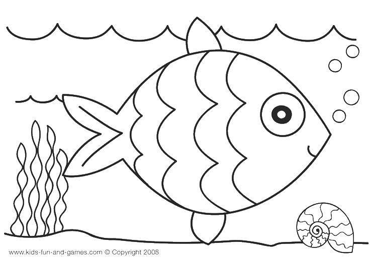 Раскраска морское Скачать ,шарик, точки,.  Распечатать