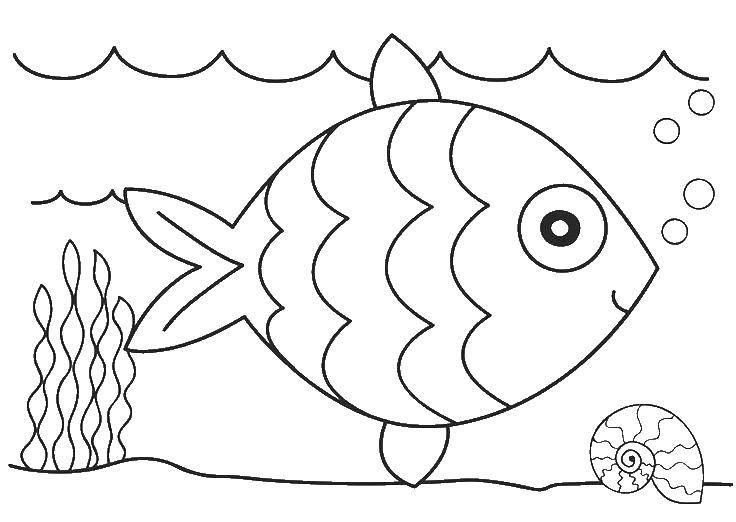 Раскраска рыбы Скачать ,как нарисовать, животные, птички,.  Распечатать