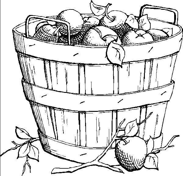 Раскраска фрукты Скачать ,тарелка, фрукты,.  Распечатать