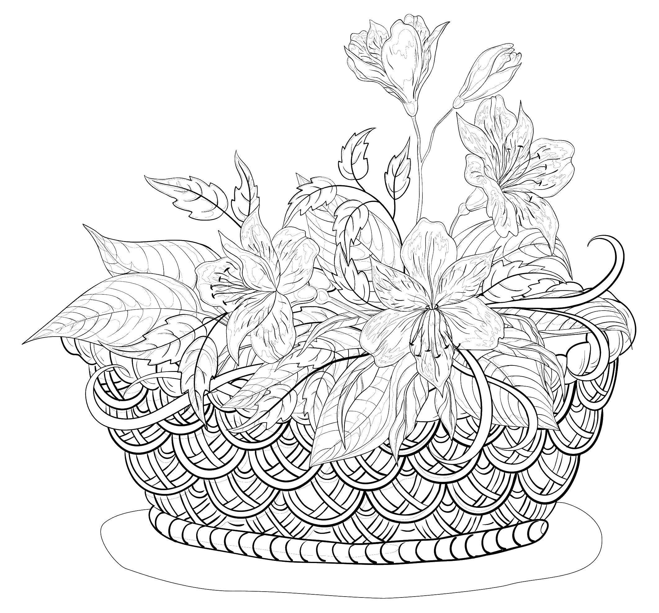 раскраски раскраска корзина цветов раскраски для взрослых