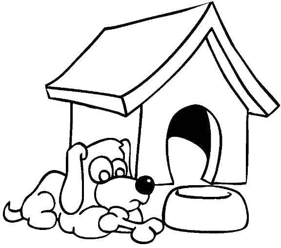 Раскраска Собака и будка Скачать Одежда, платье.  Распечатать ,Платья,