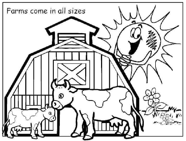 Раскраска Коровы на ферме Скачать ферма, животные, коровы.  Распечатать ,ферма,