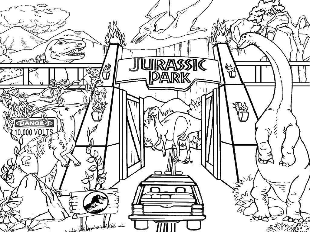 Раскраска Парк юрского периода Скачать динозавры, юрский парк.  Распечатать ,динозавр,