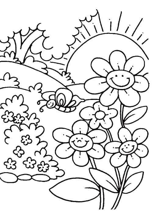 Раскраска Бабочка на лугу Скачать природа, сад, растения, бабочки.  Распечатать ,Природа,