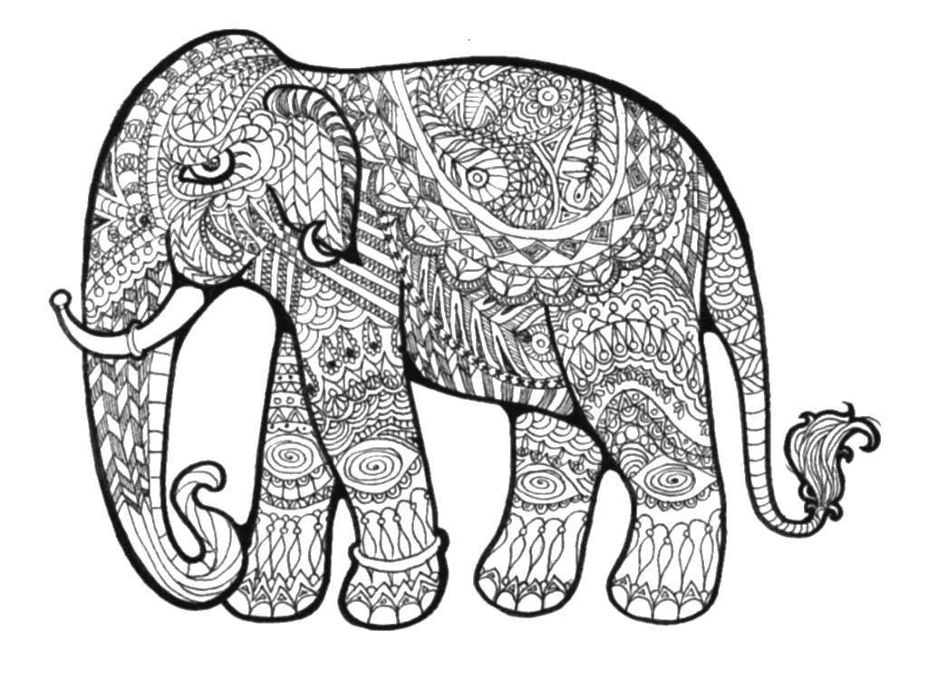 Раскраска Этнический грозный слон Скачать Антистресс.  Распечатать ,раскраски для подростков,