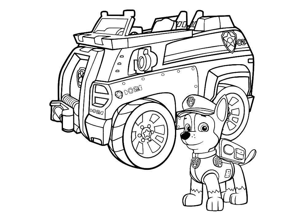 Раскраска Гонщик у машины Скачать щенячий патруль, мультфильмы, гонщик.  Распечатать ,щенячий патруль,