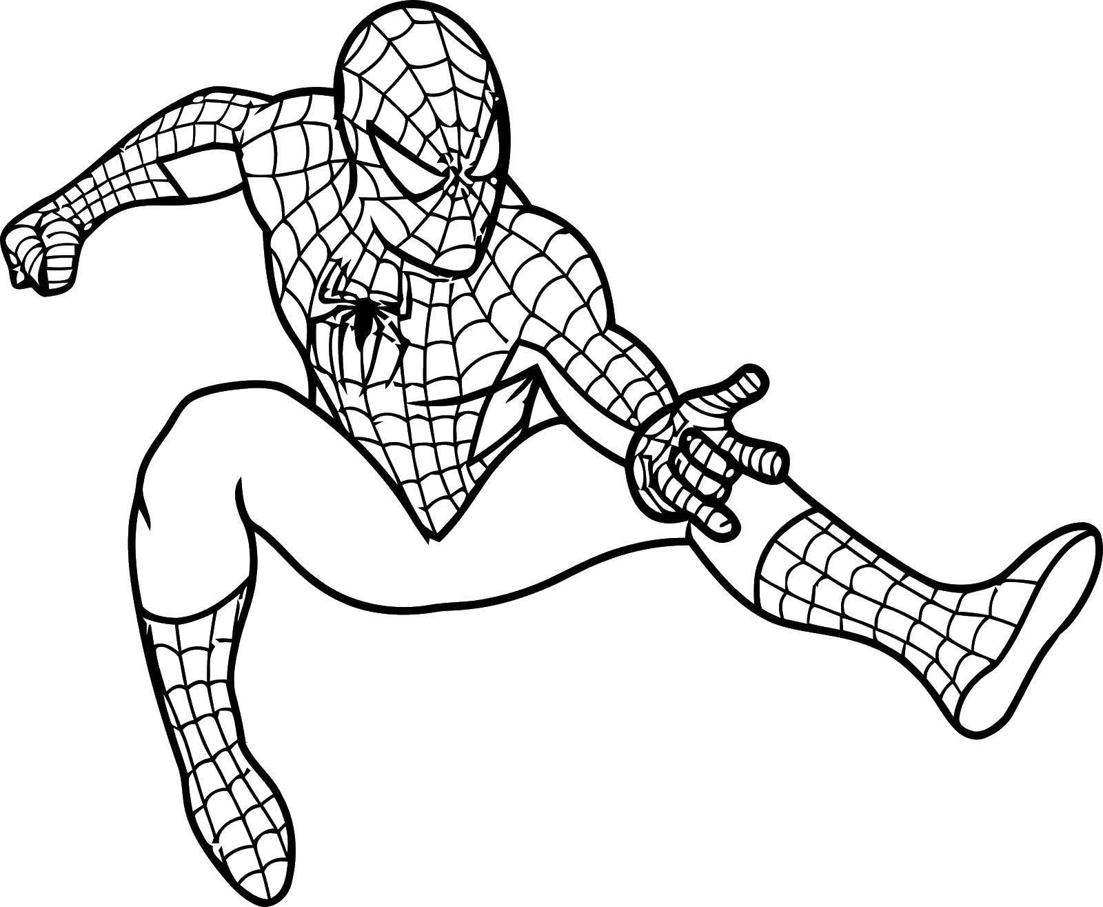 Название: Раскраска Готов к бою. Категория: Комиксы. Теги: Комиксы, Спайдермэн, Человек Паук.