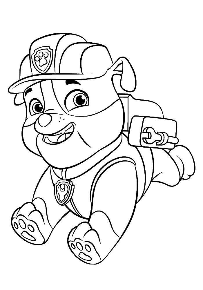 Раскраска Собачка Скачать щенячий патруль, мультфильмы, собаки.  Распечатать ,щенячий патруль,
