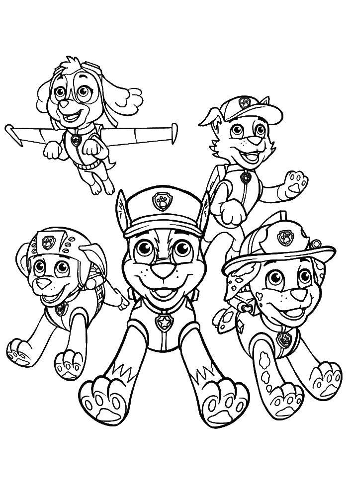 Раскраска Собачки персонажи щенячьего патруля Скачать щенячий патруль, мультфильмы, персонажи.  Распечатать ,щенячий патруль,