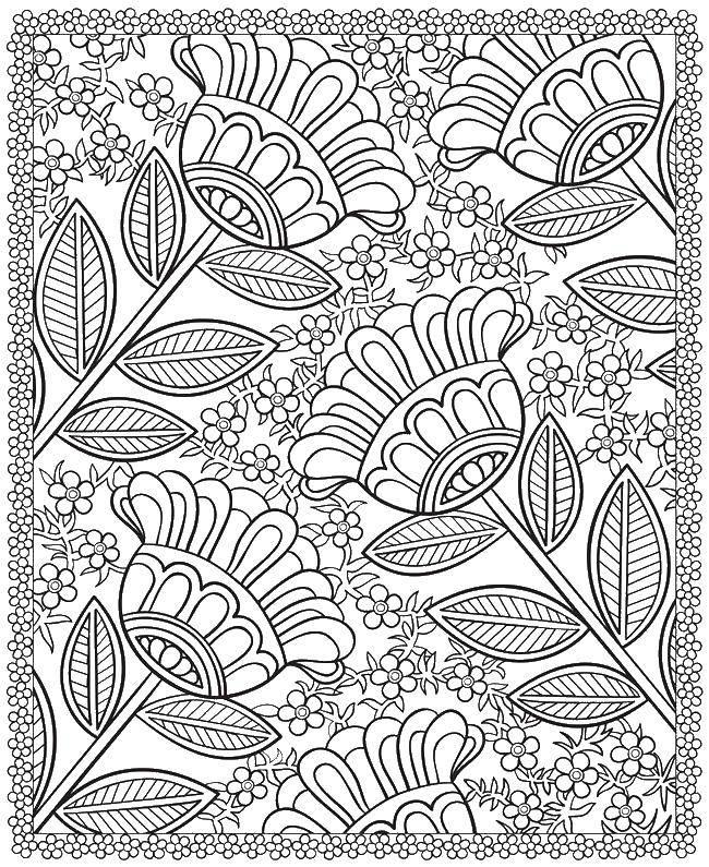 Раскраска Узоры с цветами Скачать ,тигренок,,.  Распечатать