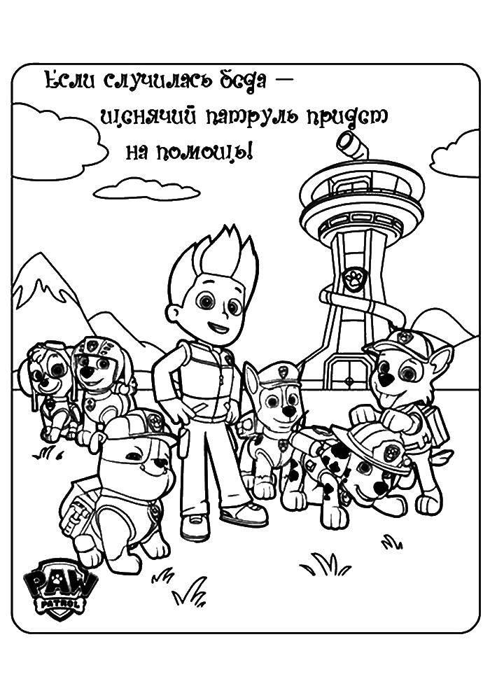 Раскраска Весь щенячий патруль Скачать щенячий патруль, мультфильмы.  Распечатать ,щенячий патруль,