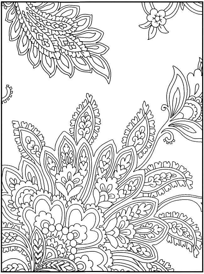раскраски листочки раскраска лепестки листочки цветы узоры