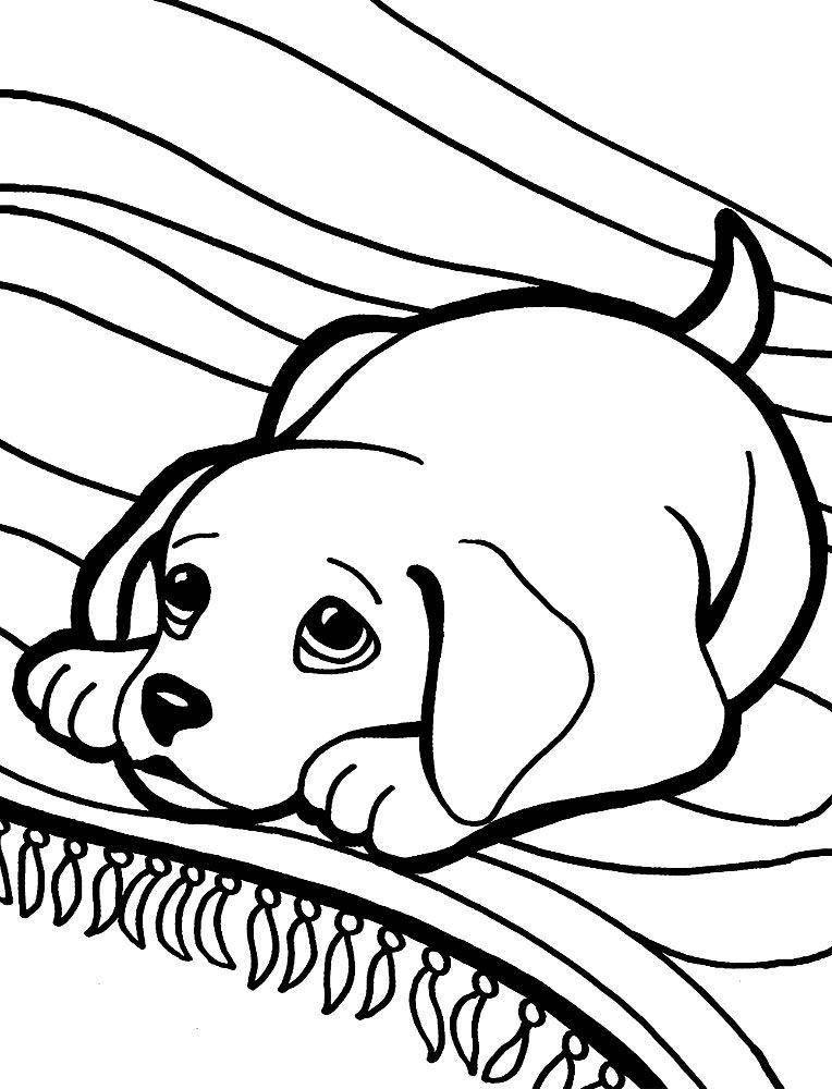 Раскраска Рисунок щенка с грустными глазами Скачать щенок.  Распечатать ,домашние животные,