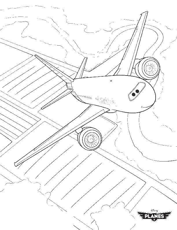 Раскраска самолеты Скачать Птицы, петушок.  Распечатать ,домашние животные,