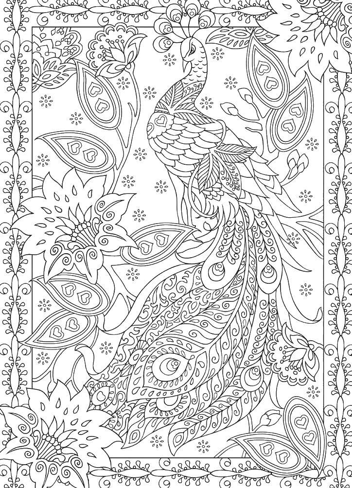 Раскраска Узорный мир павлина Скачать Птицы, павлин.  Распечатать ,раскраски антистресс,