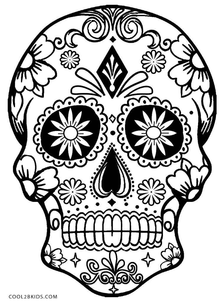 Раскраска Череп с узорами и цветочками.. Скачать черепа, цветочки, узоры.  Распечатать ,Череп,