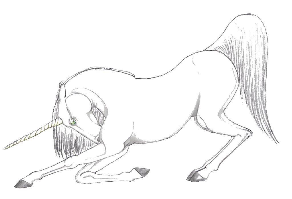 Раскраска Красивый единорог.. Скачать единороги, пони, лошади, конь.  Распечатать ,единороги,