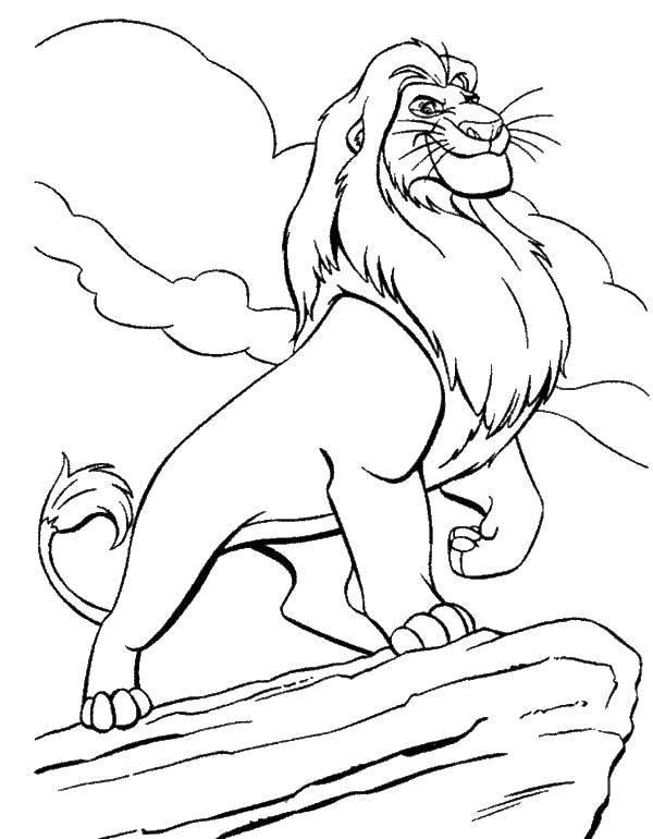 Раскраска Лев на горе Скачать ,король лев, лев, мультфильмы,.  Распечатать