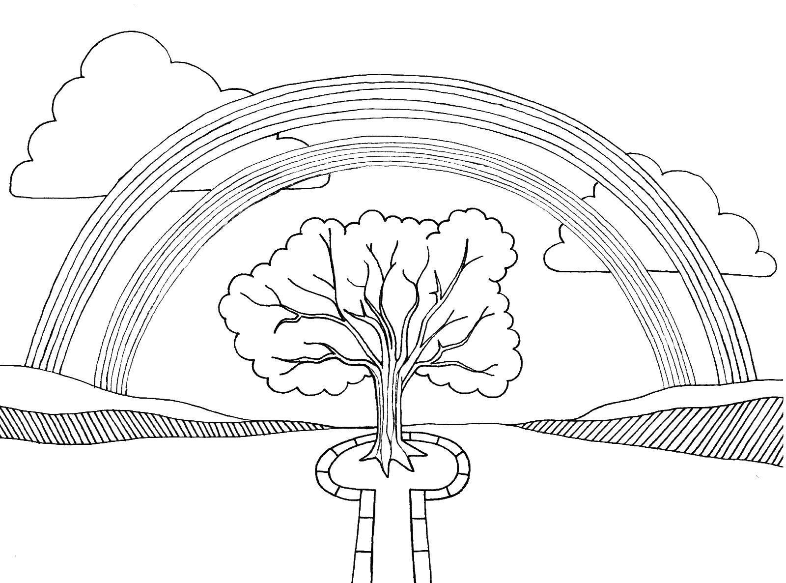 Раскраска Радуга над деревом Скачать радуга, дерево.  Распечатать ,Радуга,