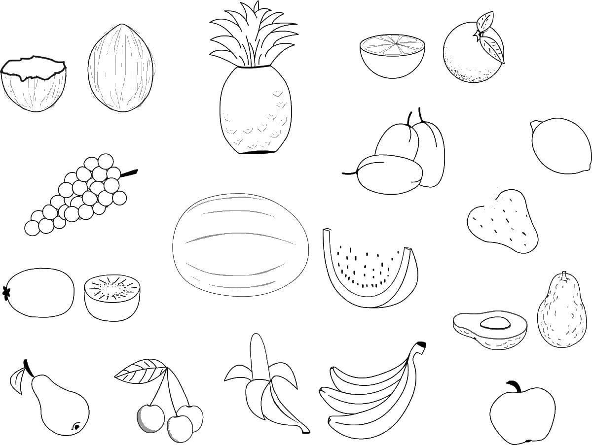 Раскраска Разные фрукты и ягоды Скачать еда, фрукты, ягоды.  Распечатать ,Еда,