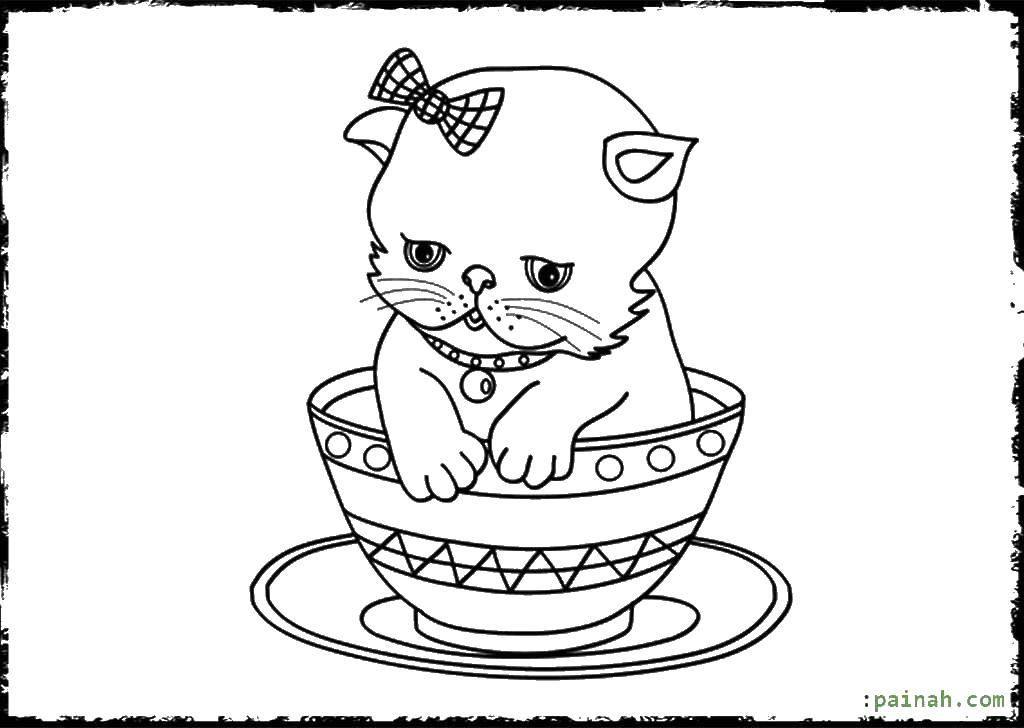 Раскраска Щеночек в чашечке. Скачать собаки, животные, чашечка.  Распечатать ,собаки,