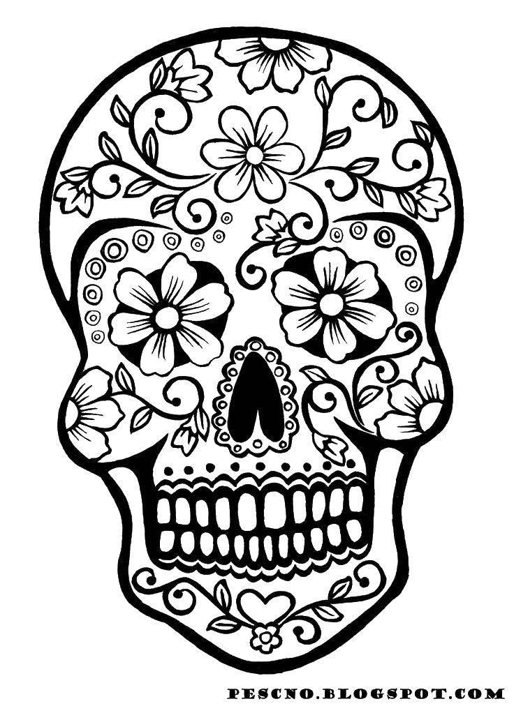 Раскраска Цветочные узорчики на черепке. Скачать Череп, узоры.  Распечатать ,Череп,