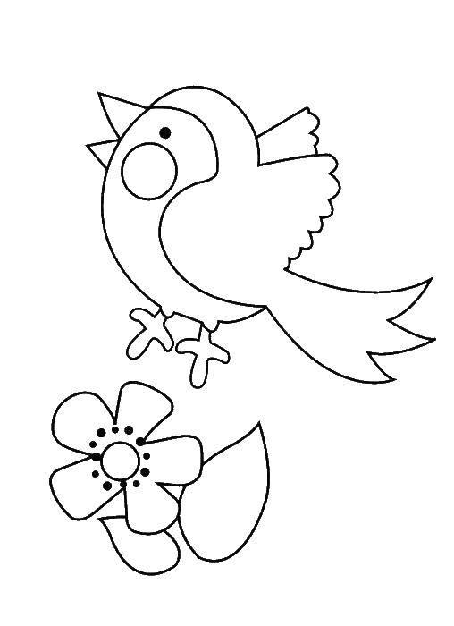 Раскраска Раскраски для малышей Скачать герой игр.  Распечатать ,Компьютерные игры,