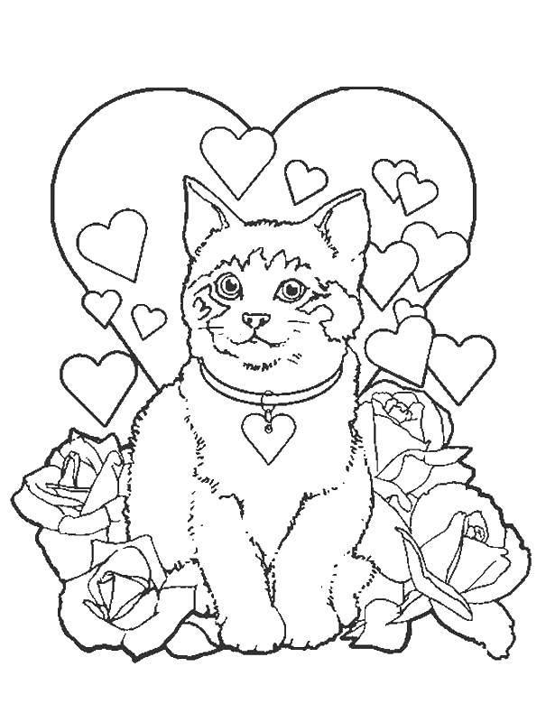 Раскраска Коты и котята Скачать Осенний листопад, листья.  Распечатать ,Осенний листопад,