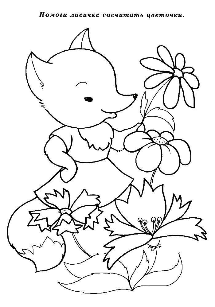 Раскраска Обучающие раскраски Скачать ,лиса, цветы,.  Распечатать