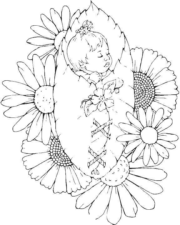 Раскраска Феечка ребенок спит на цветке Скачать ,фея, цветы,.  Распечатать