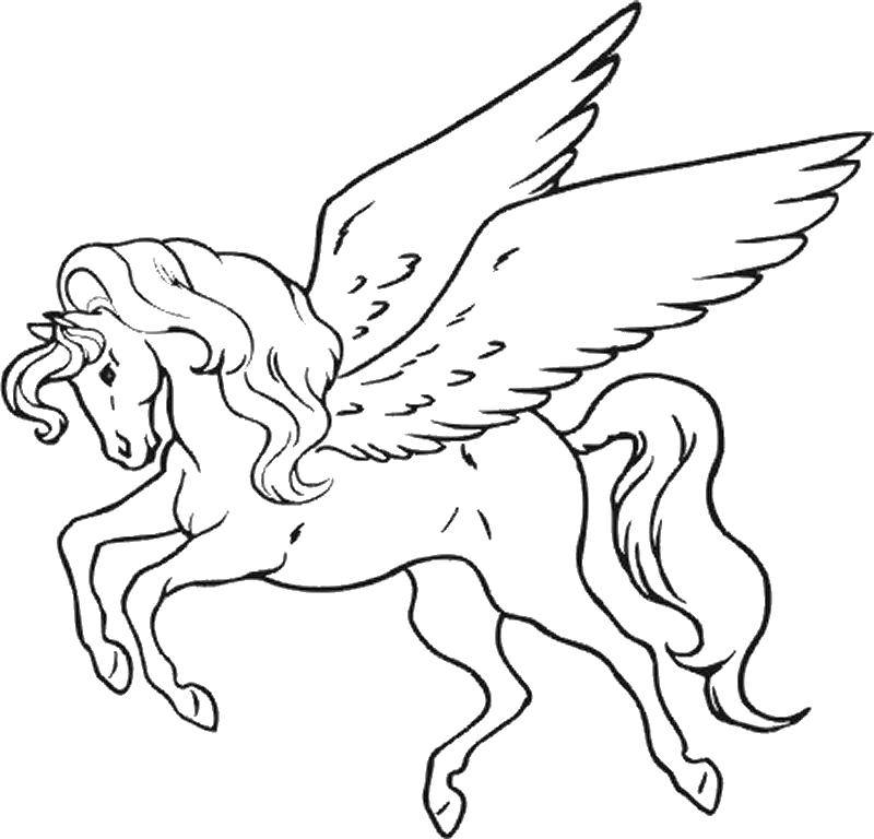Раскраска Крылатый конь пегас Скачать Волшебное создание.  Распечатать ,Волшебные создания,