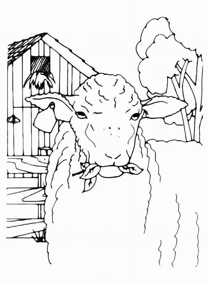 Раскраска домашние животные Скачать ,Посуда, столовые приборы,.  Распечатать
