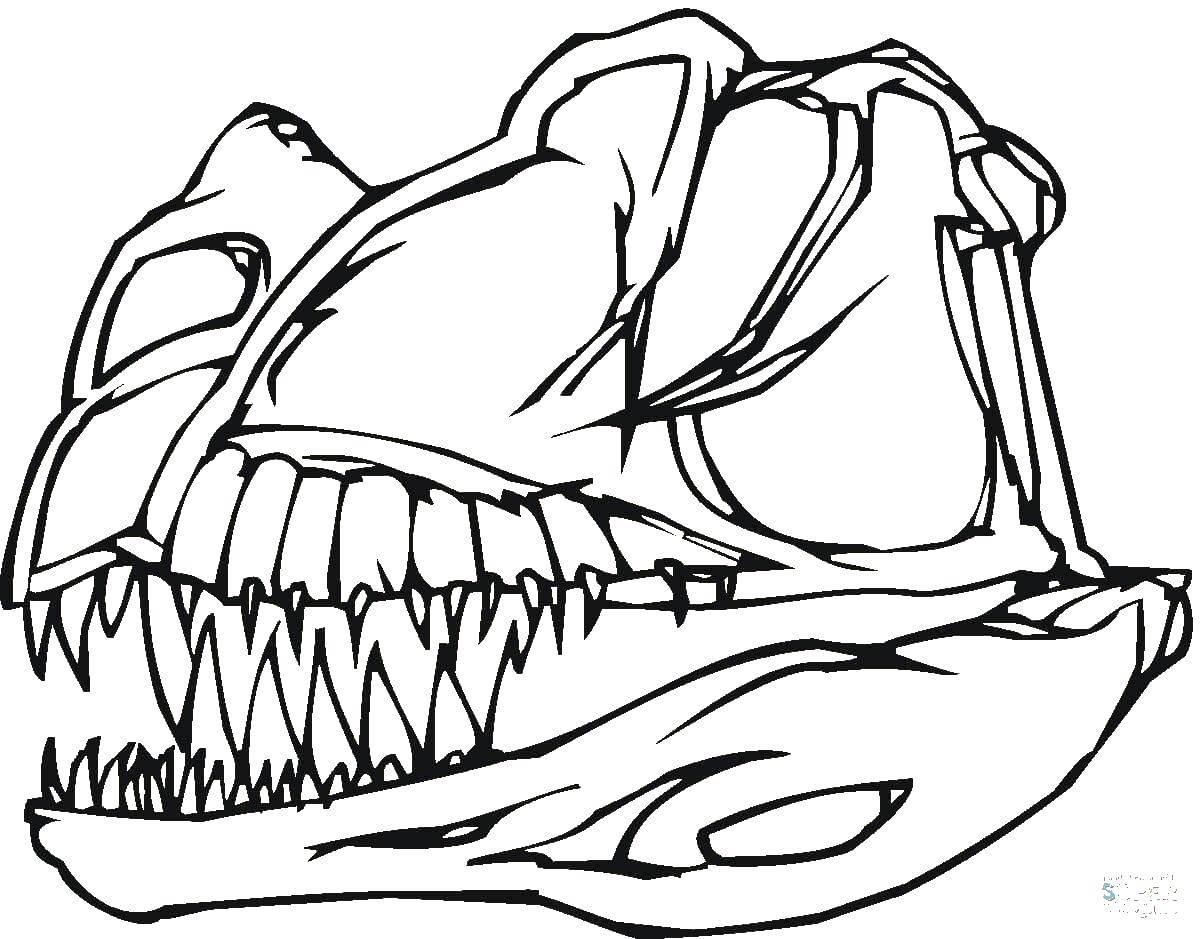 Раскраска динозавр Скачать Животные, собака.  Распечатать ,Животные,