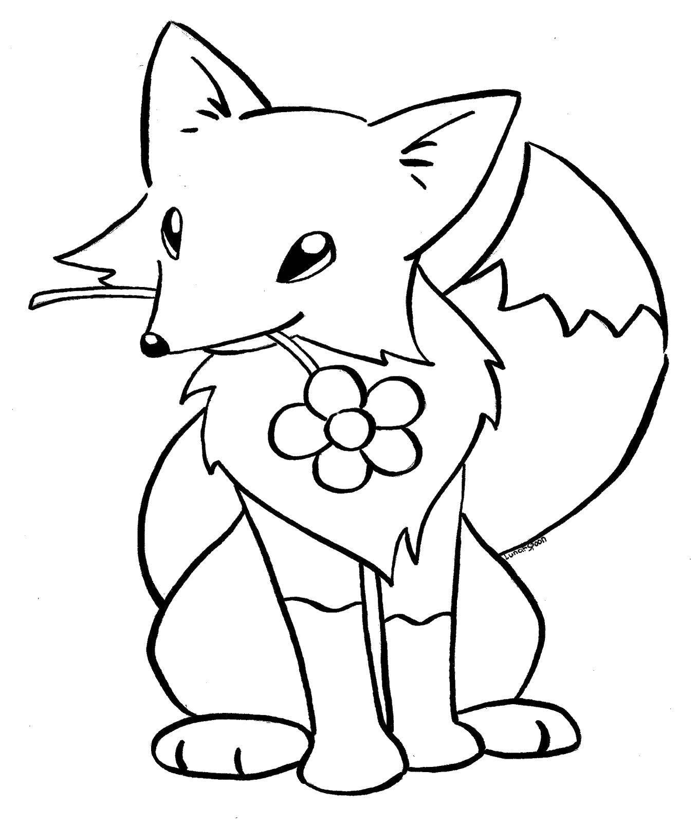 Раскраска Лисичка с цветочком Скачать животные, лиса, лисичка, цветок.  Распечатать ,Животные,