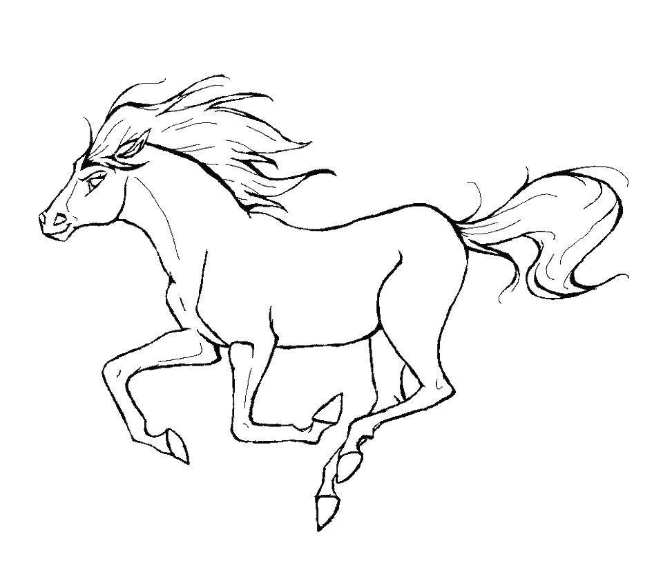 Раскраска Спирит лошадка Скачать лошадь, спирит.  Распечатать ,лошади,