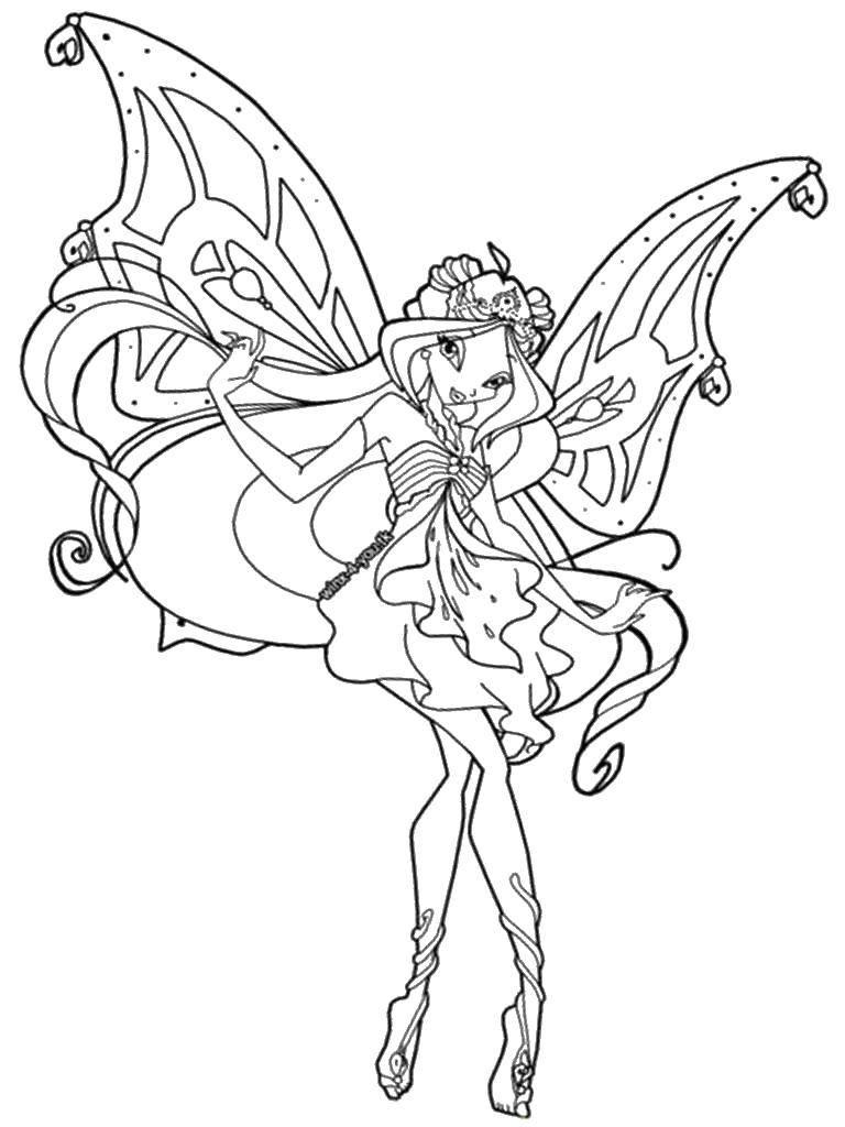 Раскраска Блум и её красивые крылышки Скачать Персонаж из мультфильма, Winx.  Распечатать ,Винкс клуб,