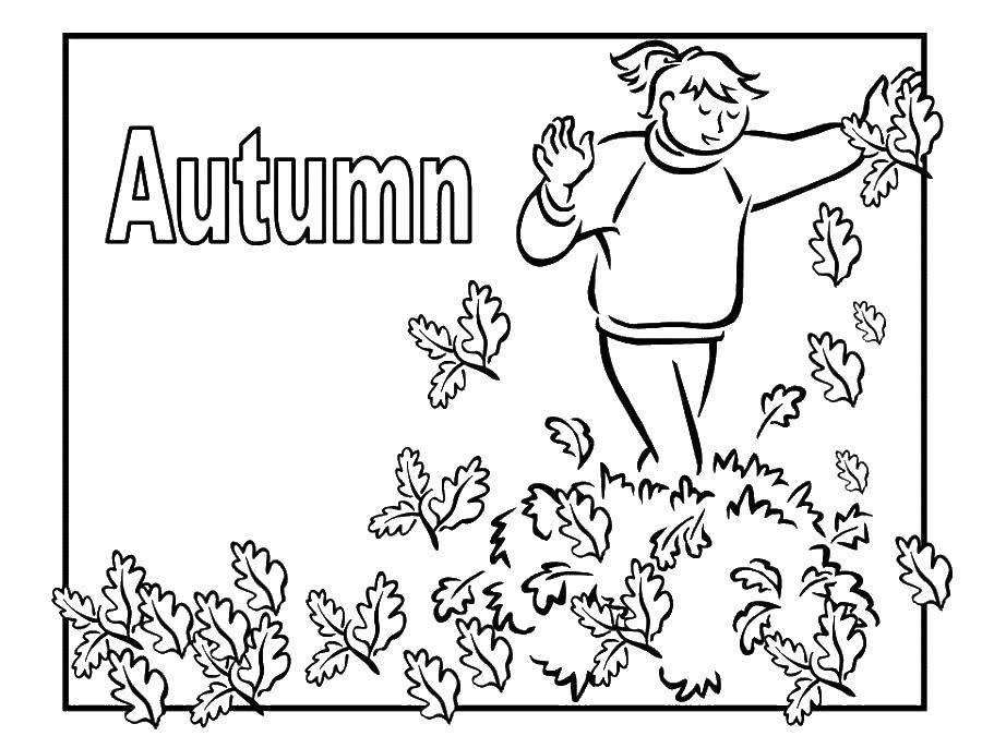 Раскраска Осенний листопад Скачать Клоун, цирк, радость, веселье.  Распечатать ,Клоуны,