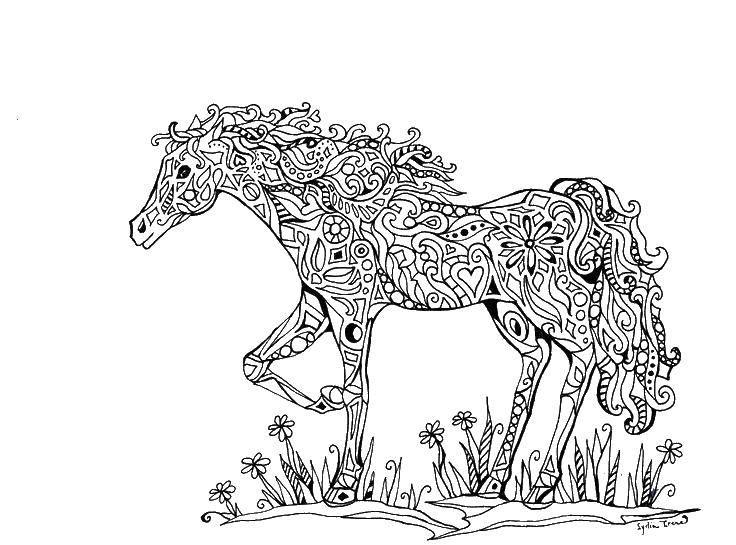 Раскраска Лошадка в узорах Скачать Узоры, животные.  Распечатать ,узоры,