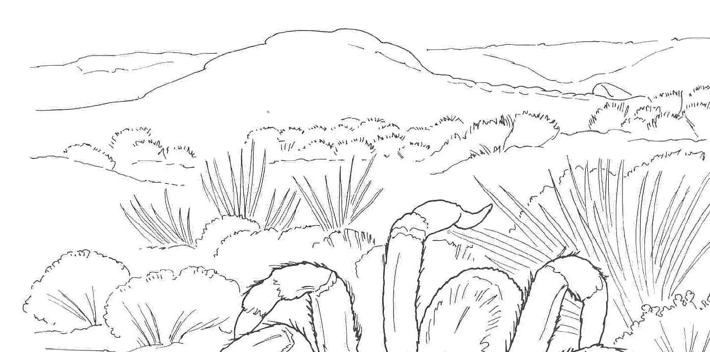 Раскраска Растения пустыни Скачать пустыня.  Распечатать ,Пустыня,