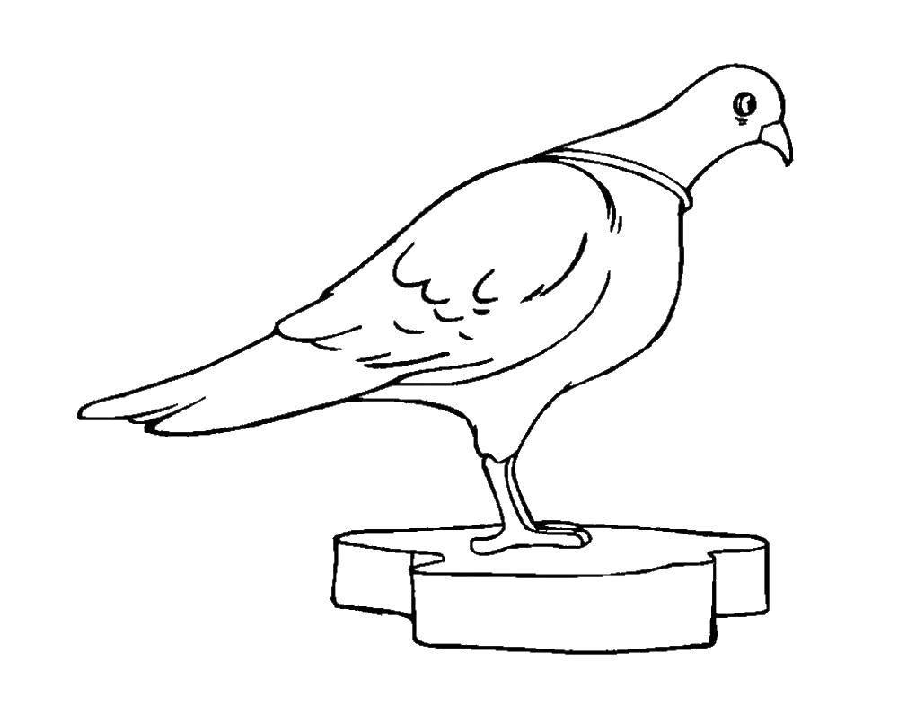 Раскраска Лебедь Скачать лебеди, птички.  Распечатать ,голубь мира,